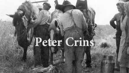Peter Crins in de prijzen op Limburg Film Festival