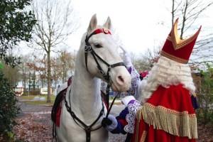 Sinterklaas_02