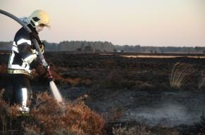 Zeer grote heidebrand Leenderbos