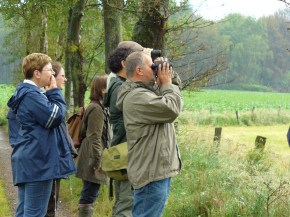 Excursie grauwe klauwier in het kader van het soortenproject.