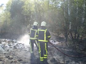 Brandweer bos peel blussen