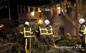 2013-12-05 Boom valt op auto Alexanderstraat Nederweert 2496