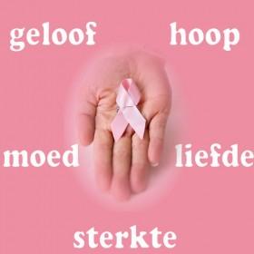 Nieuwjaarsbijeenkomst Borstkankervereniging Nederland