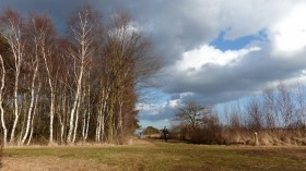 Dagwandeling in De Groote Peel