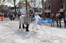 Paarden jaarmarkt in Weert