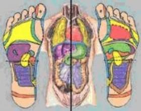 verband tussen voeten en het lichaam