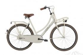 fiets gestolen