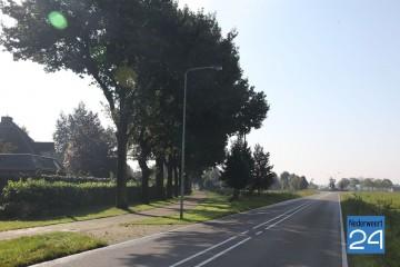 Bomen Braosheuf
