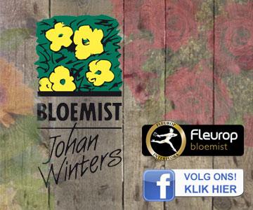 Winters-bloemist-360x300