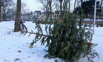 huis-aan-huis ophalen kerstboom