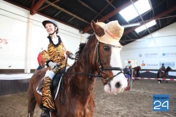 Ponnyspellendag Manege De Kraal Budschop