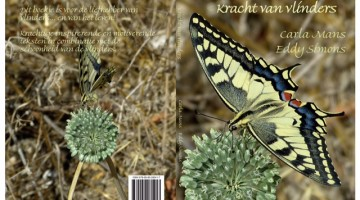 Kracht van vlinders