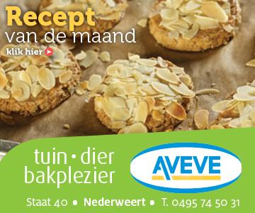 AVEVE_banner-360x300-Recept-juni