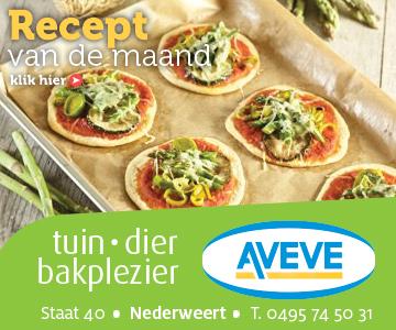 AVEVE_banner-360x300-Recept-augustus