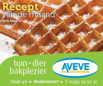 AVEVE_banner-360x300-Recept-november
