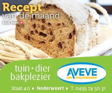 AVEVE_banner-360x300-Recept-oktober