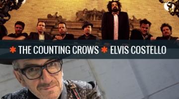 Elvis Costello en DeWolff op Bospop