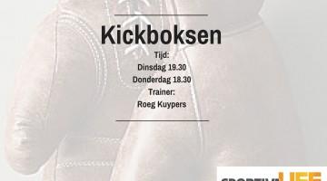 Boksen en kickboksen bij SportivaLife