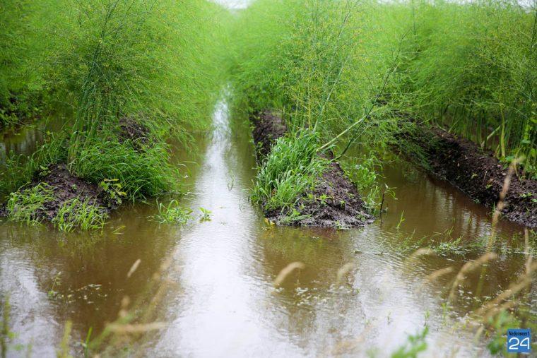Wateroverlast akker-2