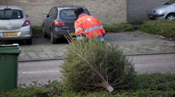 Wanneer wordt uw kerstboom opgehaald?