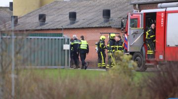 Brand in container bij varkenshouderij in Tungelroy