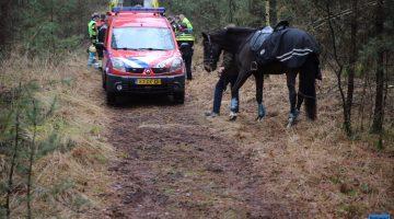 Vrouw valt van paard en raakt gewond