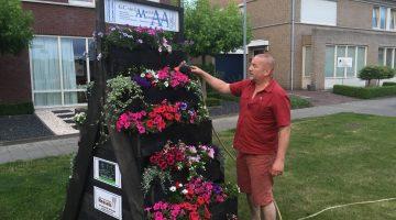 Help de plantentorens Ospel de warme dagen door