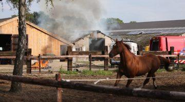 Brand in schuur met hooi in Altweerterheide
