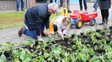 Bewoners samen aan de slag met beplanten Plataanstraat