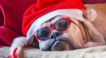 Tijd voor cadeautjes …. jippie … of niet?
