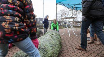 Kerstboom bij Thomashuis Ospeldijk