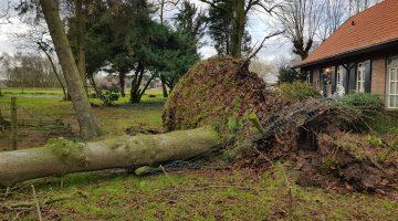 Stormschade in Nederweert, stuur je foto in!