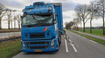 Boom op voorruit vrachtwagen