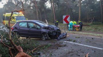 Auto frontaal tegen boom