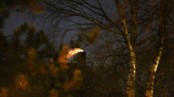 Schoorsteenbrand bij woning aan Kreijel in Ospel