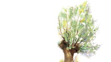 Overlijdensbericht: Dinie Kramer – Dierink