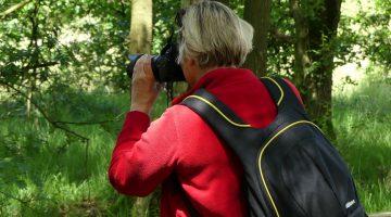 Wandel, geniet en fotografeer in de Peel