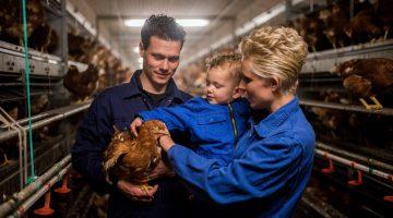 Boeren van Nederweert Dag: aanmelden is nog mogelijk
