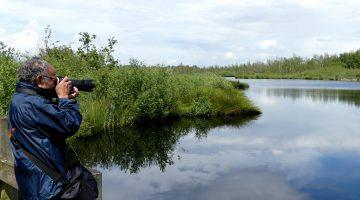 Wandel, geniet en fotografeer in De Groote Peel