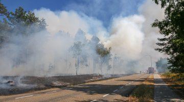 Grote brand natuurgebied Doctor Anton Philipsweg