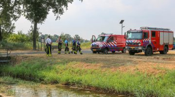 Koe zoekt verfrissing, brandweer in actie