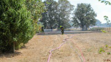 Tuindershuisje gaat in vlammen op en zet stoppenveld in brand