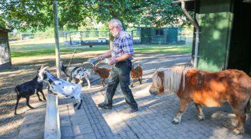 Nieuwe beheerders dierenweide Nederweert-West