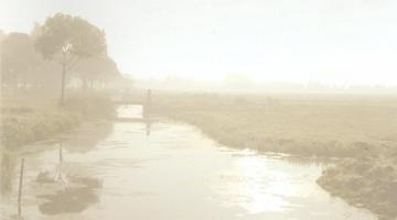 Overlijdensbericht: Albert Meulendijks