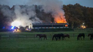 Hooibroei waarschijnlijk oorzaak van brand in paardenstal Nederweert