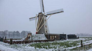Sneeuw in Nederweert – Stuur jouw winterfoto in! (Foto's)