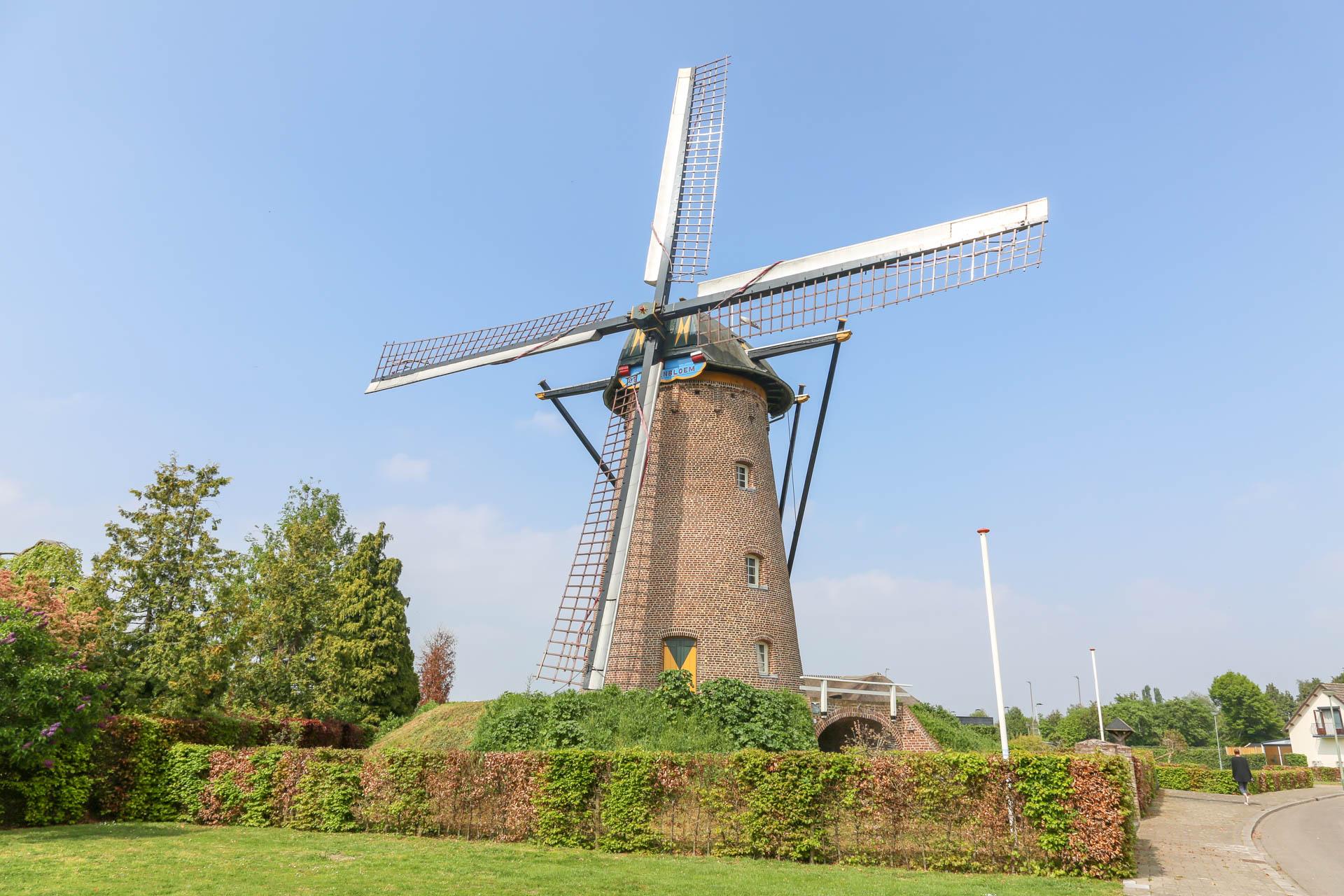 De-Korenbloem-Windmolen-1