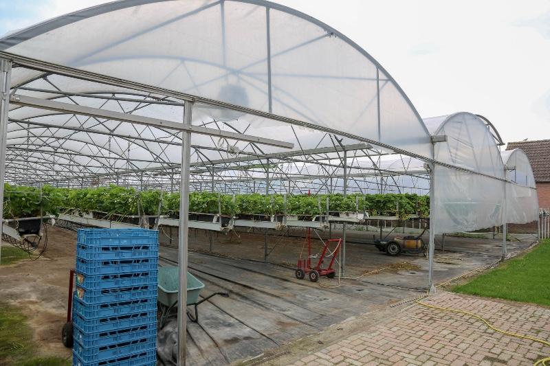 Boerderijwinkel-Linders-Wijen-1