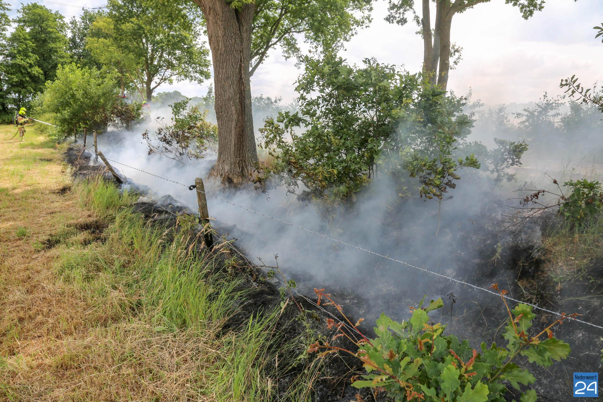 Brandweer blust flinke bermbrand in Ospeldijk - Nederweert24 - Nederweert24