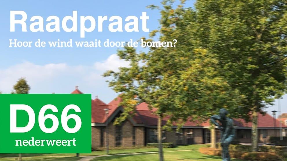 Raadpraat Hoor De Wind Waait Door De Bomen Nederweert24